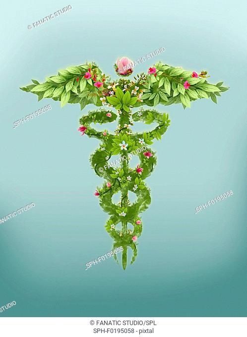 Illustration of caduceus symbol
