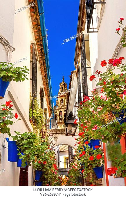 Flower Street Calleja de las Flores Old Torre del Alminar Bell Tower Mezquita Cordoba Andalusia Spain. Mezquita created in 785 as a Mosque