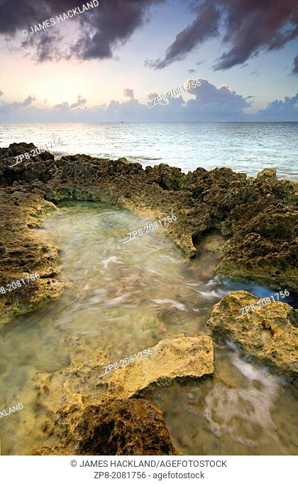 Sunset light and limestone rock on the coast of Cozumel Island, Mexico