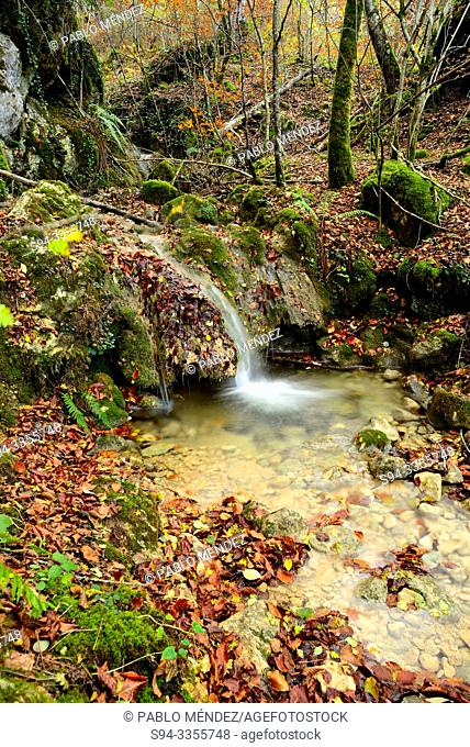 Small waterfall in a beech wood of Andoin, Alava, Spain