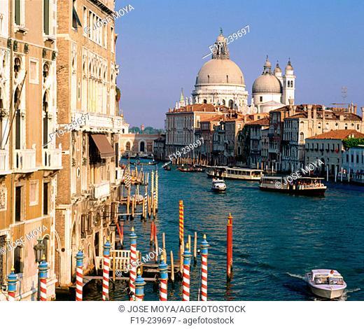 Santa Maria della Salute. Venice. Italy