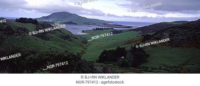 New Zeeland coast landscape