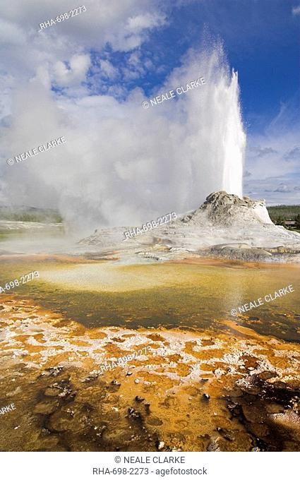 Castle Geyser erupting, Upper Geyser Basin, Yellowstone National Park, UNESCO World Heritage Site, Wyoming, United States of America, North America
