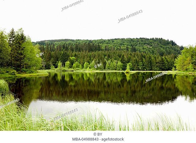Lac de Lisbach, Vosges Mountains, France