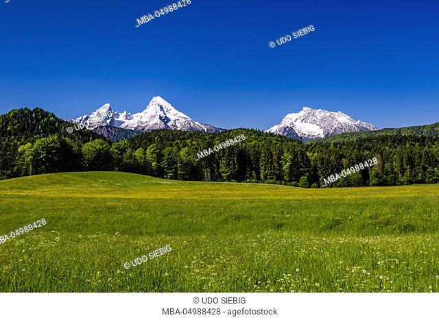 Germany, Bavaria, Upper Bavaria, Berchtesgadener Land (district), Bischofswiesen (bishop's meadows), view to Watzmann and Hochkalter