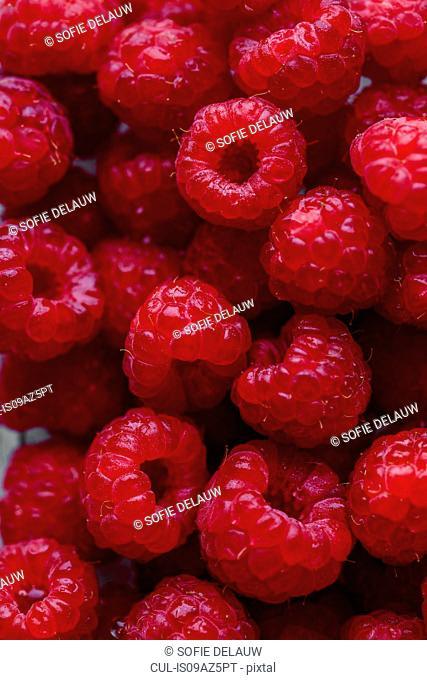 Overhead full frame view of fresh raspberries
