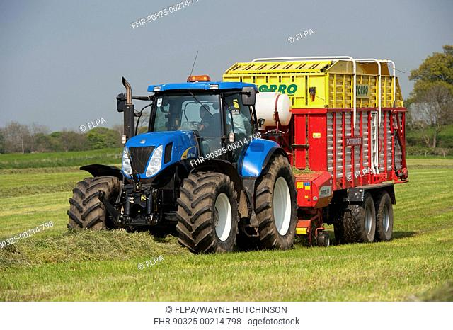 New Holland tractor with Pottinger forage wagon, picking up grass in silage field, Northumberland, England, May