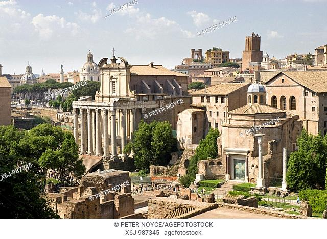General view of the Forum from Palatino, Palatine, Rome