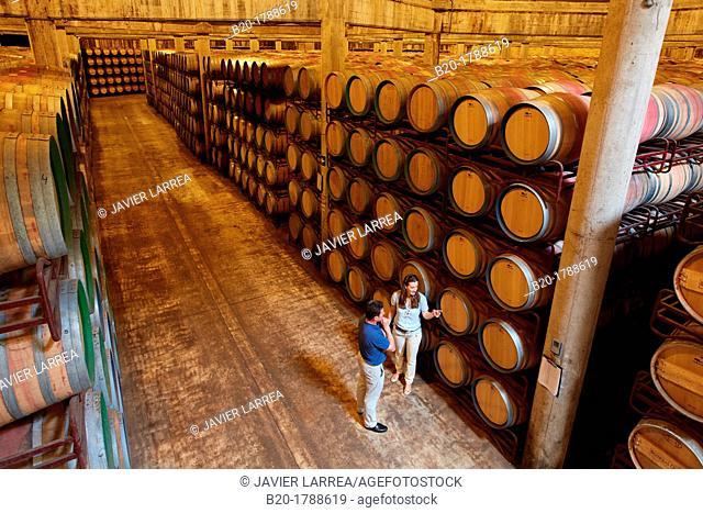 Wine cellar, Aging wine storage in barrels , Olarra winery, Rioja, Logroño, Spain