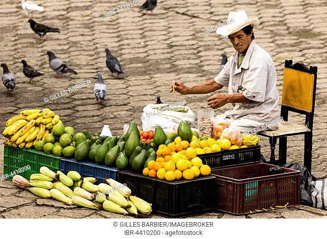 Man selling fruits and vegetables in the street, Antioquia, Colombia