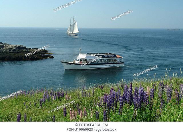 Monhegan Island, ME, Maine, Hardy Boat Cruises