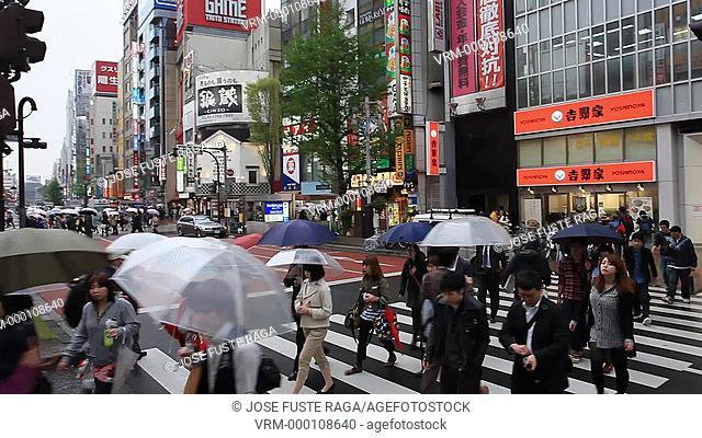 Japan , Tokyo City , Shinjuku District,Shinjuku Avenue