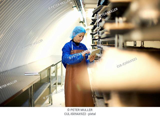 Female worker updating digital tablet whilst preparing stack of seed trays in underground tunnel nursery, London, UK