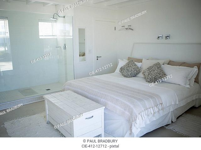 Bed, shower and trunk in modern bedroom