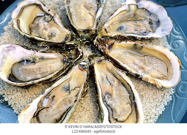Specialities of restaurant 'Chez Philippe'. Bouzigues oysters. Port of Marseillan. Hérault department. Languedoc-Roussillon Region. France