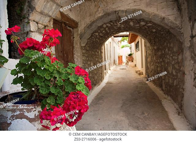 Passageway in Sitia village with geranium flowers in a pot in the foreground, Lasithi, Crete, Greek Islands, Greece, Europe
