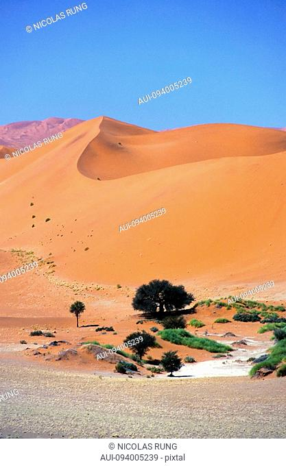 Namibia - Namib Naukluft park - Red dune in Sossusvlei