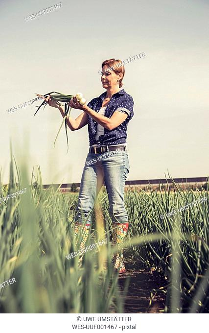 Mature woman examining onions in field