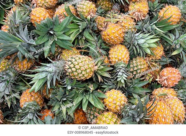 A huge amount of fresh pineapple