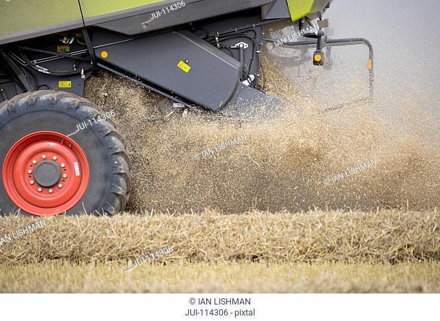 Wheat Chaff From Harvest Blowing Out Of Combine Harvester