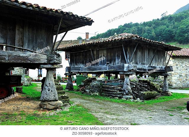Tyipical raised granary. Espinaredo town, Concejo de Piloña, Asturias, Spain