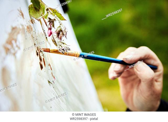 Close up of an artist applying paint to paper with a brush, and a sprig of plant material over the artwork