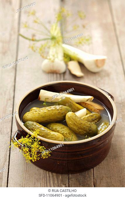 Gherkins with garlic, horseradish and dill