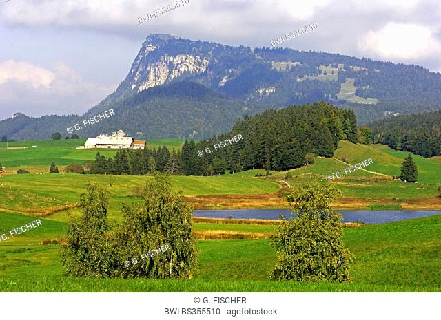 , view across the Vallee de Joux to Mt. Dent de Vaulion, Switzerland, Waadt, Le Pont