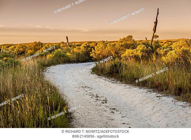 A path through the dunes at sunrise on Horn Island Sunrise off the coast of Mississippi near Biloxi