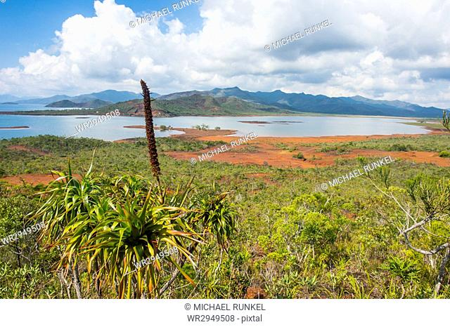 Overlook over the Blue River Provincial Park, Yate, New Caledonia, Pacific