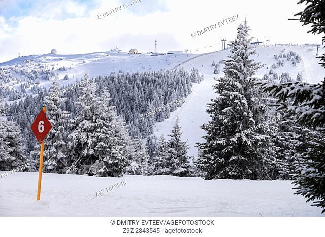 Ski trace 6, view to Pancic's Peak , Kopaonik resort, Serbia