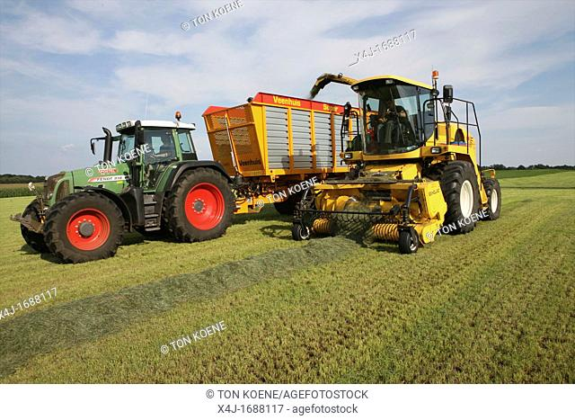 harvesting grass in the netherlands It is used for animal food during winter time