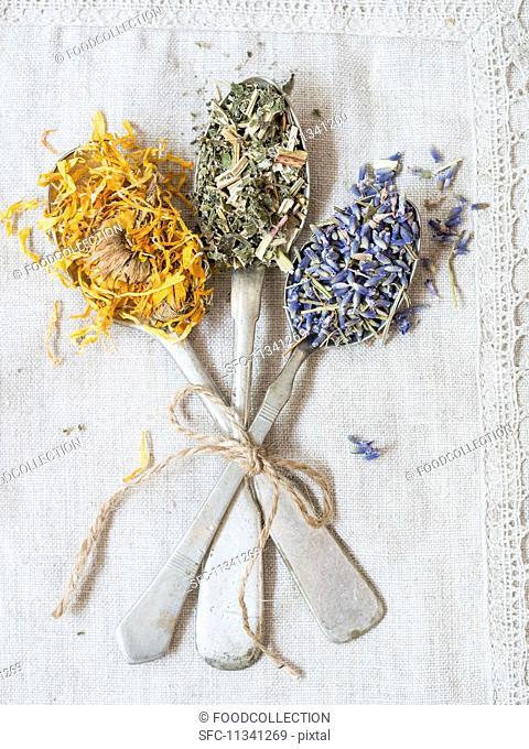 Dried medicinal herbs: lavender (lavandula), meadowsweet (filipendula ulmaria) and marigold (calendula officinalis) on silver spoons