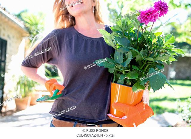 Woman carrying purple flowering plant in garden