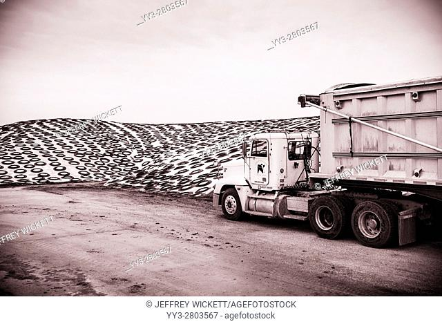 Truck and tarp covered cattle feed at industrial scale dairy farm in Indiana, USA