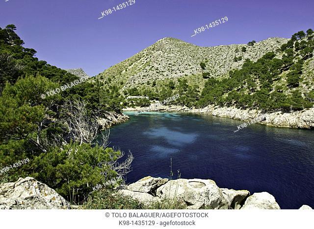 Cala Murta, Peninsula de Formentor Sierra de Tramuntana Majorca Balearic Islands Spain