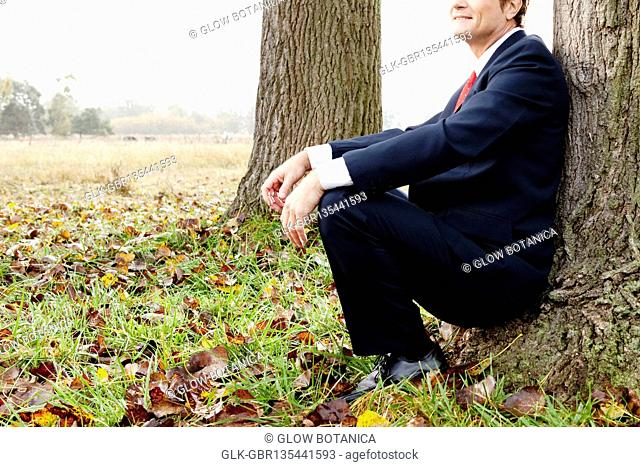 Businessman sitting and leaning against a tree