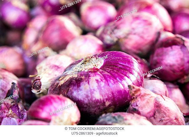 Red onions, Calbayog, Samar, Philippines