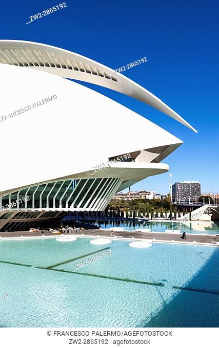 Palace of Arts Reina Sofía. Valencia, Spain