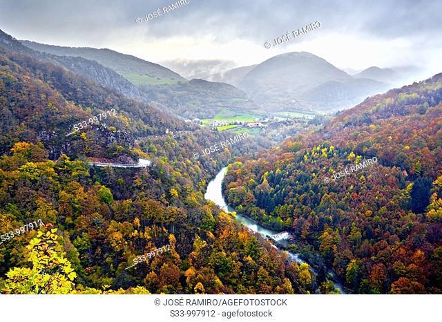 Valle de Aezkoa y rio Irati  Navarra  España