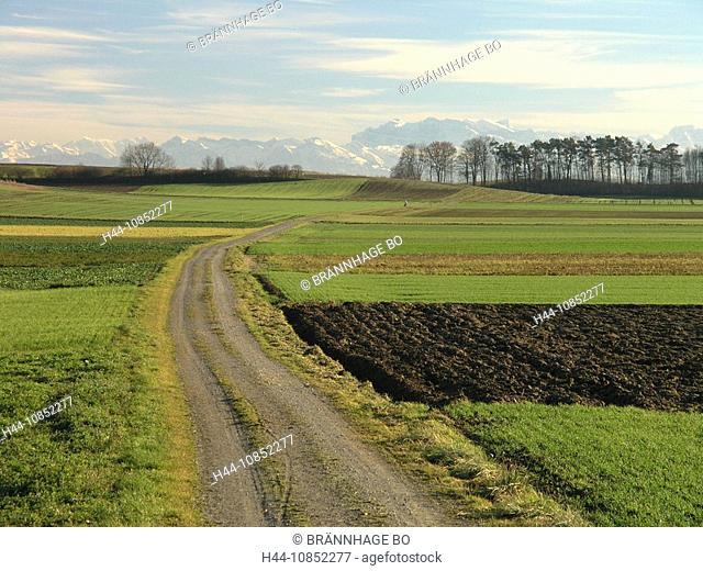 10852277, Switzerland, Canton of Zurich, landscape