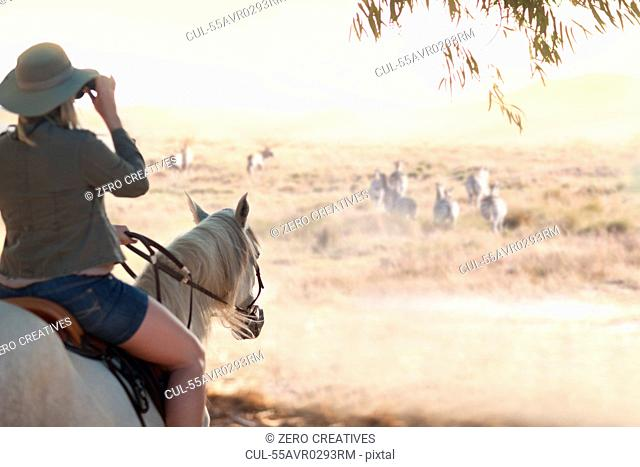 Woman on horse watching wildlife, Stellenbosch, South Africa