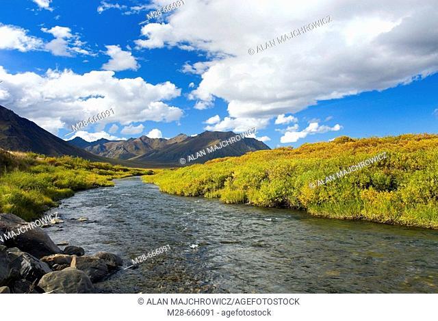 Blackstone River Tombstone Territorial Park, Yukon, Canada