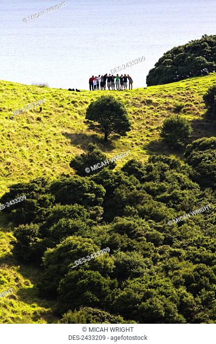 A group of people stand posing on the lush landscape with the ocean in the background; Urupukapuka Island, New Zealand