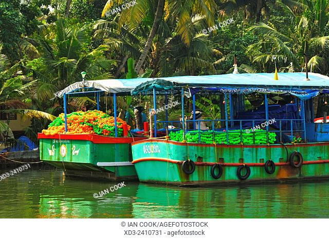 moored fishing boats in backwaters between Kollam and Cochin, Kerala, India