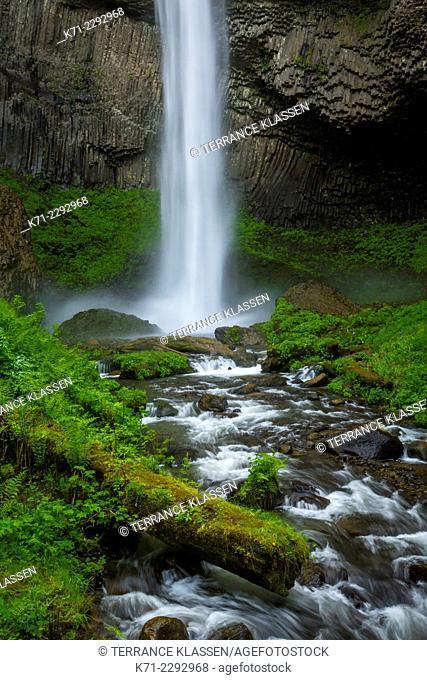 Latourell Falls in the Columbia River Gorge, Oregon, USA