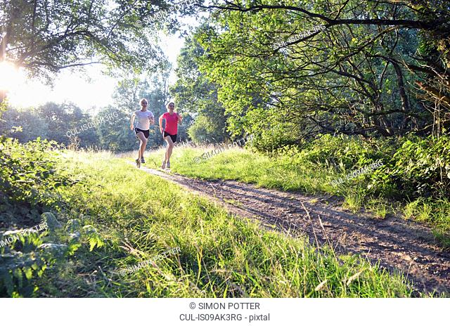 Two young women runners running along forest track in morning