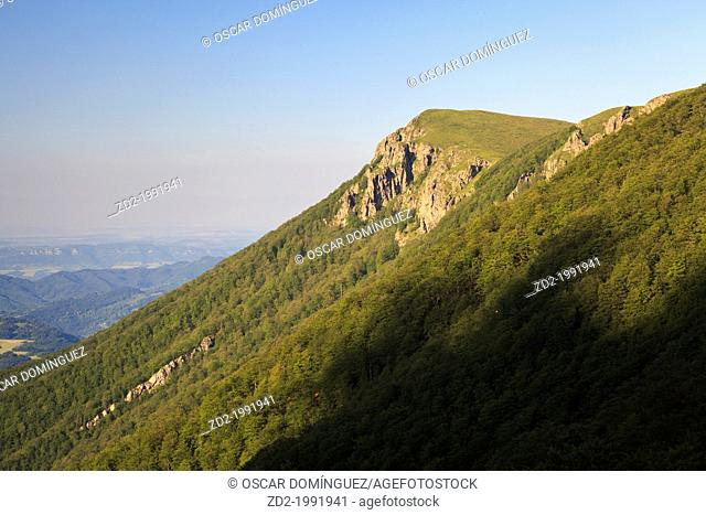Evening light on forested slope. Central Balkan National Park. Bulgaria