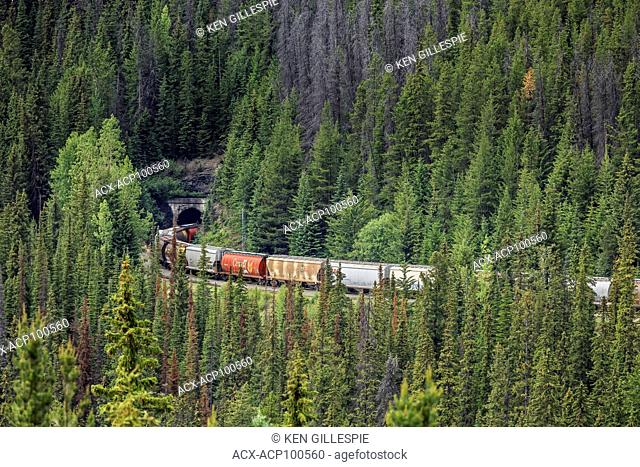 Freight train exiting the Spiral Tunnels in Yoho National Park, British Columbia, Canada