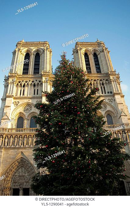 Paris, France, Notre Dame Cathedral, Front Facade, Christmas Tree
